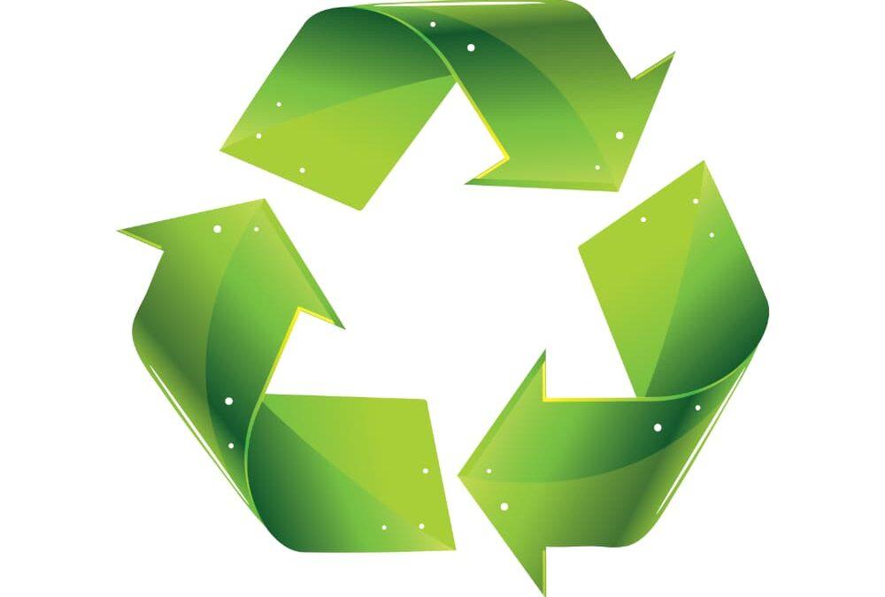 Ashprington proposed Climate & Ecological Emergency Declaration