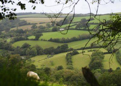 Ashprington & Tuckenhay